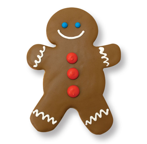 Pictures Of Decorated Gingerbread Cookies